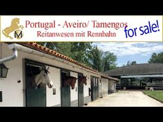 for sale: Portugal, Aveiro, Curia, equestrian property, horsestables, Re...