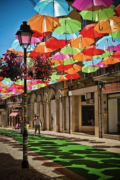 Agueda, Portugal.  The floating umbrellas lining the street