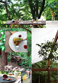 奈良  生駒山    森の中にオープン 素敵なカフェ。。  ~ MAHO-ROBA forest~