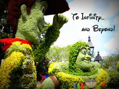 25 Things You Will NOT Overhear at Walt Disney World (funny article!)