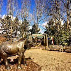 Aujourd'hui c est au #zoo de #cerza dans le #Calvados #bassenormandie #Normandy #normandie #Lisieux et tout à côté de #Caen #resto #parc #animaux #famille #prendrelair ouvert 7 jours sur 7 #igersfrance #igersnormandie #igers #instagood by petitfutecaencalvados