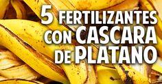COSAS DEL JARDÍN nos muestra 5 de sus recetas secretas para el mejor cuidado del huerto y del jardín.