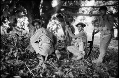 EAST PAKISTAN. Near Thakergaon. Pakistani troops under cover during a firefight with Indian army.