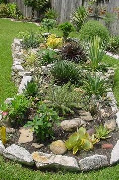 Thinking of a flower bed similar to this in the backyard.  Plants that grow well in SE Texas.