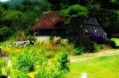 flower house - flowers - colorful - green - old - timbo - pomerode Rustic Gardens, Countryside, Cabin, House Styles, Green, Flowers, Color, Home Decor, Decoration Home