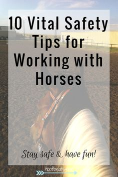 10 Vital safety tips for working with horses - via Hoofbeats and Ink