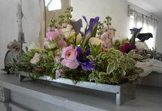 Un pomeriggio tra i fiori