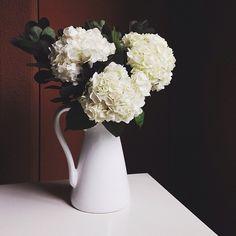 hydrangeas in a white pitcher