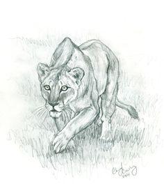 Lioness by silvercrossfox.deviantart.com on @deviantART