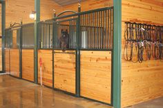 """""""Mondays are so much better hanging out in my Classic Equine stall, the square opening makes my day brighter"""" - another happy horse #classicequine #besthorsestalls #horselove #barnlove #happyhorse #CEE"""