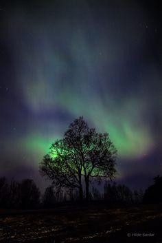 Dancing light by Hilde Sørdal on 500px