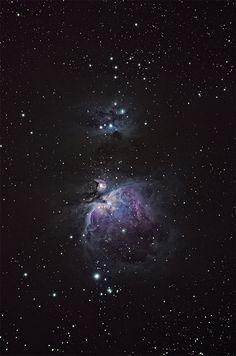 18 gennaio 2016. M42 di Giorgia Hofer.  La bellissima Nebulosa di Orione ripresa con il mio piccolo telescopio apocromatico. Somma di 30 pose per ridurre il rumore