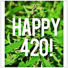 "Happy #420 to an innocent plant which puts millions of innocent ill people in jail. #marijuana  Also might I add happy birthday to #adolfhitler to a man who single handedly changed the world forever. Major technological advances because he existed and helped America become the worlds seemingly ""good"" dictator. #history is awesome  #multiplesclerosis #chronicillness #invisibleillness #spoonie"