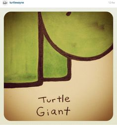 Turtle Giant @turtlewayne