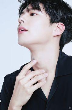 """park bogum for kakao page ✧ xx bogum vs. Asian Actors, Korean Actors, Korean Idols, Korean Men, Park Bo Gum Wallpaper, Park Bogum, Park Hyung, Song Joong, Park Seo Joon"