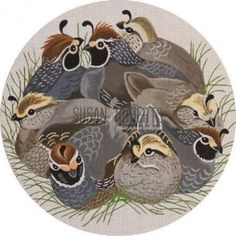 California Quail needlepoint pillow.  Design by Barbara Eyre for Susan Roberts.
