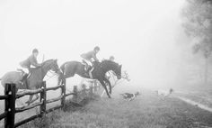 Some great Fox Hunting clubs in Nevada and Idaho. Idaho, Nevada, Cross Country Jumps, Year Of The Horse, Fox Hunting, Old Money, Show Jumping, Horse Photography, White Photography