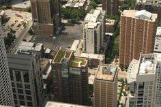 Fotografías de terrazas y techos verdes que tienen como finalidad servir de inspiración para quien decida avanzar con estos excelentes proyectos. #Arquitectura #sustentable