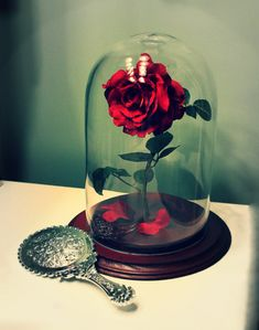 I've been on a potion and ingredient making binge... to offset the morbid items, I like to add some more magical things as well.  Here is my version of Disney's Enchanted Rose.  The idea came to me when I found the glass dome at Marshalls for $10.  I got the rose at Walmart, and some unpainted wood circles from Michaels (Oy... it took forever for me to sand the inner circle so it would fit perfectly).  LOL  The finishing touch is a 'Magic Mirror' ($1 at Dollar Tree).