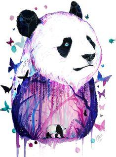 Panda  acuarela.