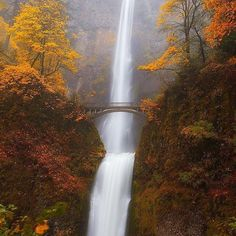 Multnomah falls, a 611 foot tall roaring cascade of icy water. Oregon. photo by: @darren white photography #earthfocus #instafollow #beauty #awesome