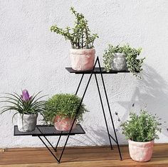 Architectural matte black frame twin peaks to grow greens hi/lo on matching mesh shelves. Fresh angle for indoor/outdoor garden. See how to haunt your house with a this season. angled plant stand is a exclusive.
