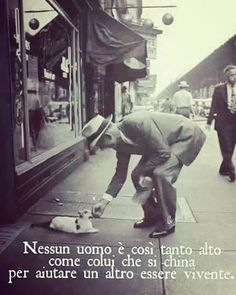 Aiutare è meraviglioso.❤ No one is as tall as who bows itself to help someone else Narrative Story, Italian Quotes, Magic Words, Worlds Of Fun, Funny Photos, Words Quotes, Life Lessons, Einstein, Quotations