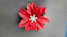 Christmas flower #6