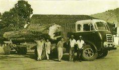 FNM D-11.000, com cabine Brasinca, possivelmente em 1958. Busses, Classic Trucks, Big Trucks, Old Cars, Mopar, Alfa Romeo, Vintage, Sport Cars, Old Pictures