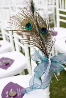 Peacock wedding ideas, peacock ceremony chairs