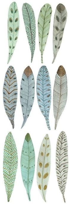 how pretty, i usually dont enjoy drawing feathers, but using color and pattern i. - how pretty, i usually dont enjoy drawing feathers, but using color and pattern in this manner adds - Feather Art, Bird Feathers, Painted Feathers, Paper Feathers, Feather Vector, Watercolor Feather, Feather Painting, Watercolor Print, Art Et Illustration