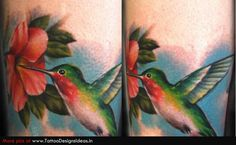 tattoos of hummingbirds and flowers   Tatto design of Flower Tattoos hummingbird - TattooDesignsIdeas.in