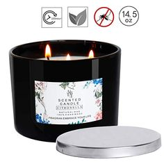 Premium 100/% Soy Apothecary Candle 16 oz Double Wicked Odor Eliminator