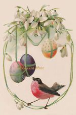 Bird With Easter Eggs - New 4x6 Vintage Image Photo Print - EA004