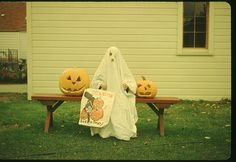 """Vintage Halloween -- a child posing in a traditional """"holes-in-the-sheet"""" ghost costume beside 2 Jack-O-Lanterns holding an old-fashioned paper trick-or-treating bag. Vintage Halloween Photos, Retro Halloween, Halloween Pictures, Halloween Ghosts, Spirit Halloween, Halloween Cards, Halloween Outfits, Happy Halloween, Halloween Decorations"""