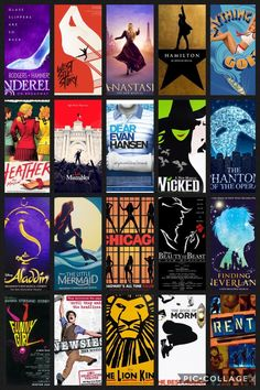 I know 5 (of the ones shown) Hamilton, Heathers, DEH, Phantom Of the Opera, and RENT :3