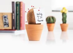 Cork Cactus Keeps Your Things Together