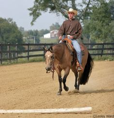 Arena Work for Trail Riders  Here are three arena exercises that are great for trail horses and trail riders.
