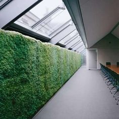 Green Wall system for a laminar, vertical growth of small leaved plants, which has an amazing effect on the interior design, both visual, and climatic. An optical attraction which contributes to a healthy indoor climate, and by producing oxygen and humidity helps the air quality.
