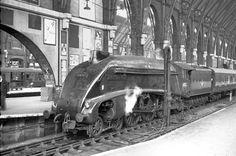 60026 Miles Beevor resting at Kings Cross Steam Railway, Steam Engine, Steam Locomotive, Africa Travel, Buses, Diesel, Cathedral, Nostalgia, Shelves