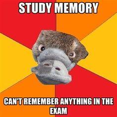 Psychology Jokes                                                       …