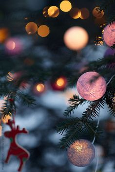 Christmas tree, lit balls and ornaments at night by Miquel Llonch - Stocksy United Wallpaper Natal, New Year Wallpaper, Lit Wallpaper, Wallpaper Backgrounds, Iphone Wallpaper, Christmas Phone Wallpaper, Christmas Aesthetic Wallpaper, Holiday Wallpaper, Winter Wallpaper