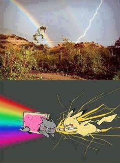 Nyan Cat vs Pikachu (Rainbow vs Lightning Bolt) - Funny Pokemon - Funny Pokemon meme - - Lo que la gente ve (ariva) Lo que yo veo (abajo) The post Nyan Cat vs Pikachu (Rainbow vs Lightning Bolt) appeared first on Gag Dad. Really Funny Memes, Stupid Funny Memes, Funny Relatable Memes, Haha Funny, Funny Geek, Nyan Cat, Pikachu Cat, Pokemon Funny, Pokemon Memes