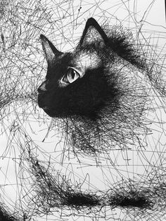 "psychedelicsf: ""Scribble cat by Bryce Albright aka Bosmink """