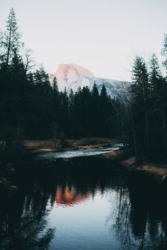 bvddhist:  upclosefromafar:  ~My Hidden Nirvana~  organic // spiritual // hippie