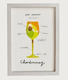 Wine Anatomy