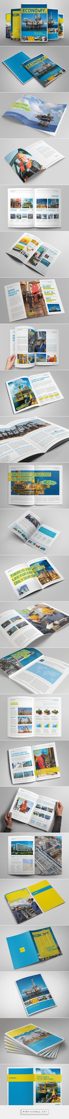 Economy Brochure by The Mikinger
