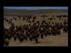 Buffalo Jump -Lakota