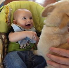21 Babies Meeting Dogs For The First Time Funny Baby Pictures, Animal Pictures, Cute Pictures, Funny Pics, Baby Animals, Funny Animals, Cute Animals, Happy Facts, Most Beautiful Animals