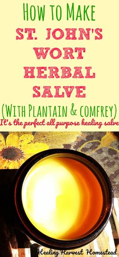 It's easy to make an herbal healing salve! Here are the directions for making a St. Johns Wort Salve with Comfrey & Plantain that you can use to moisturize as well as general purpose healing salve. Find out how to make an herbal healing salve that's easy and effective.